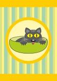Animal familier de dessin animé dans la cuvette - chat de chéri Images stock