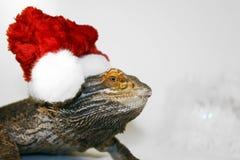 animal familier de Noël Image libre de droits