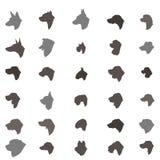 Animal familier différent réglé de race de DOS d'icône de silhouette de tête de chien Photos libres de droits