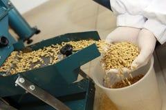 Free Animal Feed Stock Photos - 62609703