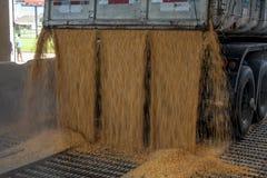 Animal feed factory Stock Photos