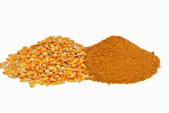 Corn ddgs , distilling dried grain with soluble to produce bio diesel and alcohol / ethanol. Animal feed, protein, fiber, energy, toxin, by product royalty free stock image