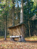 Animal feeder in Slovak forest royalty free stock photos