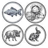 Animal and fish stamps Stock Photography