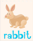 Animal flashcard with rabbit royalty free illustration