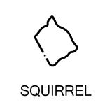 Animal flat icon. Squirrel icon. Single high quality outline symbol for web design or mobile app. Thin line sign for design logo. Black outline pictogram on Royalty Free Stock Photos