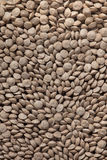 Animal food pellets. Background texture Royalty Free Stock Image