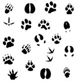 Animal foot prints. Collection of outlines of animal foot prints vector illustration
