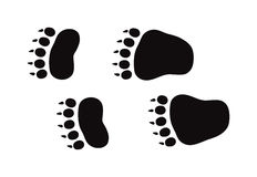 Animal foot prints and tracks isolated steps traces on white for wildlife concept design vector. Stock Photography