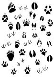 Animal footpints set Royalty Free Stock Image