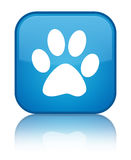 Animal footprint icon special cyan blue square button Royalty Free Stock Image