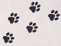 Animal Footprints. Footprints of animal on surface Stock Photo