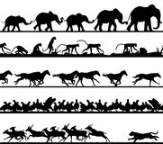 Animal foreground silhouettes. Set of editable vector animal silhouette foregrounds with all figures as separate objects vector illustration