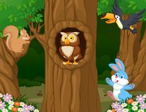 Animal In The Forest Illustration Of Royalty Free