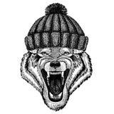 Animal frais animal de Wolf Dog Wild utilisant le chapeau tricoté d'hiver Chapeau chaud de Noël de calotte de coiffe pour le tato Images stock