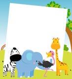 Animal and frame Stock Photos