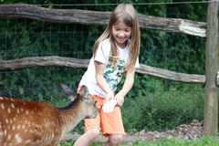 Animal Friend. Blond young girl feeding the animals Royalty Free Stock Photo