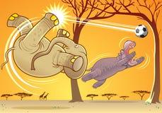 Animal fun. Elephant and hippopotamus playing football Stock Image