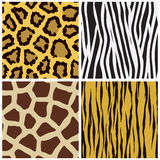 Animal fur seamless pattern Royalty Free Stock Photo