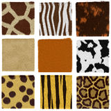 Animal fur set. Texture set of animal fur vector illustration