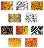 Animal fur and skin. Set of animal fur and skin patterns for design Royalty Free Stock Photos
