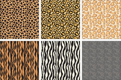 Animal fur texture. Animal fur set,includes:chetah、jaguar、giraffe、tiger、zebra,elephant Stock Photos