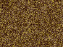 Animal fur texture - leopard Royalty Free Stock Image