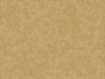 Animal fur texture - puma vector illustration