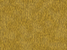 Animal fur texture- tiger Stock Image