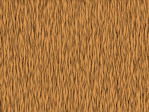 Animal fur texture -tiger orange Royalty Free Stock Images
