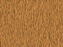 Animal fur texture -tiger orange Royalty Free Stock Images