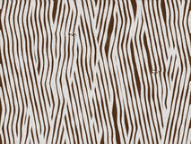 Animal fur texture- zebra baby Royalty Free Stock Photo