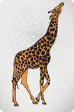 Animal giraffe. Vector illustration. Royalty Free Stock Photography