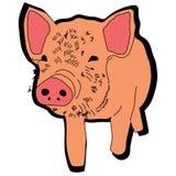 Animal guarro del ejemplo del extracto del diseño de la historieta del icono del verraco del cerdo Fotografía de archivo
