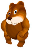 Animal hamster brown character cartoon style  illustration Royalty Free Stock Photography