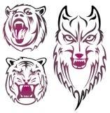 Animal head Stock Images