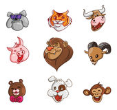 Animal Head Collection Royalty Free Stock Images