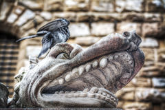 Animal head in Hercules and Cacus statue Royalty Free Stock Image