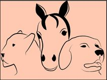 Animal heads. Vector illustration of animal heads Royalty Free Stock Photo