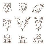 Animal Heads and Plants Icons Set Linear Style Stock Images
