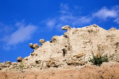 Animal Heads of Rock Peeking Over Cliff in Badlands National Par royalty free stock photos