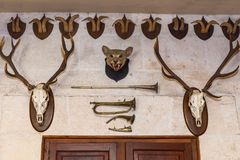 Animal heads on the wall. The heads of the animals on the wall, above the doors. Animal heads on the wall Stock Photo