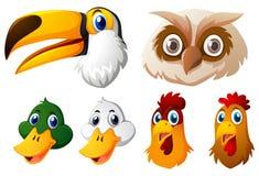 Animal heads on white background. Illustration Royalty Free Stock Photo