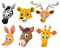 Animal heads on white background. Illustration Royalty Free Stock Images