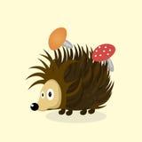 Animal Hedgehog cartoon. Hedgehog animal nature illustration beautiful background vector Stock Image