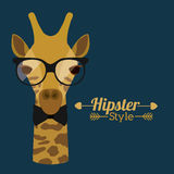 Animal hipster design Stock Photo