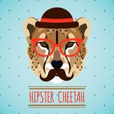 Animal hipster portrait Stock Image