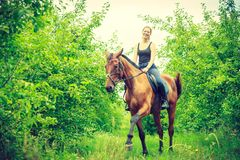 Young woman sitting on a horse. Animal, horsemanship concept. Young woman sitting and ridding on a horse through garden on sunny spring day Royalty Free Stock Photo