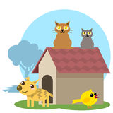 Animal house 01 Royalty Free Stock Images
