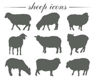 Animal husbandry. breeding of sheep. set of vector silhouettes on white Stock Image